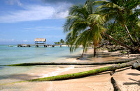 One of the many endless beaches of Tobago, West Indies: 900_0010